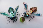 Fly footie, insect brooches. Recycled plastics & mixed media. by Hannah Coates
