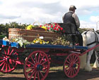 Basketwork Coffin by Bedfordshire Basketmakers
